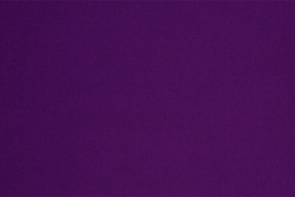Deep Purple Nylon Lycra | Color Chart