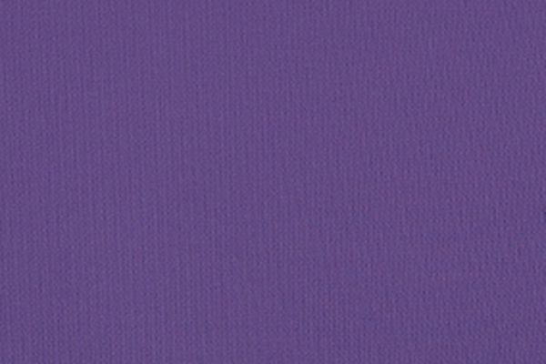 Sporty Fig Nylon Lycra | Color Chart