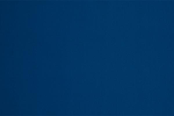 Royal Blue Nylon Lycra | Color Chart