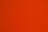 Image Athletic Orange Nylon Lycra