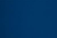 Image Royal Blue Nylon Lycra