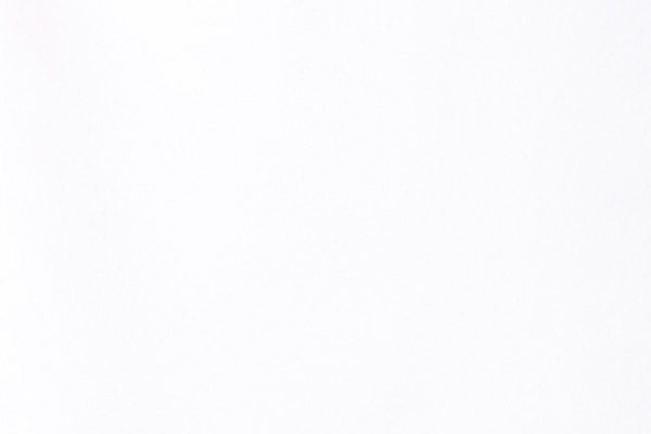 White Nylon Lycra   Color Chart